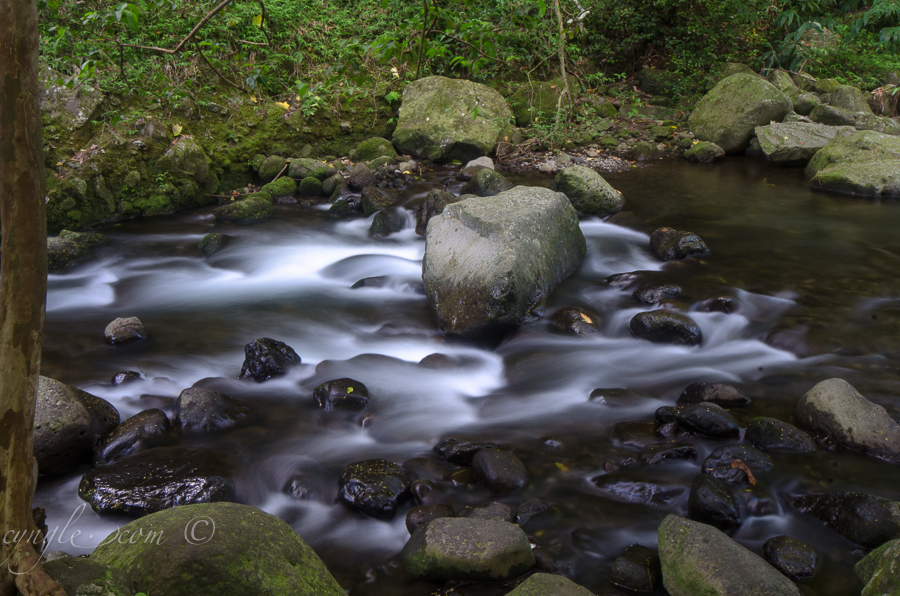 A glamour shot of Iao Stream.