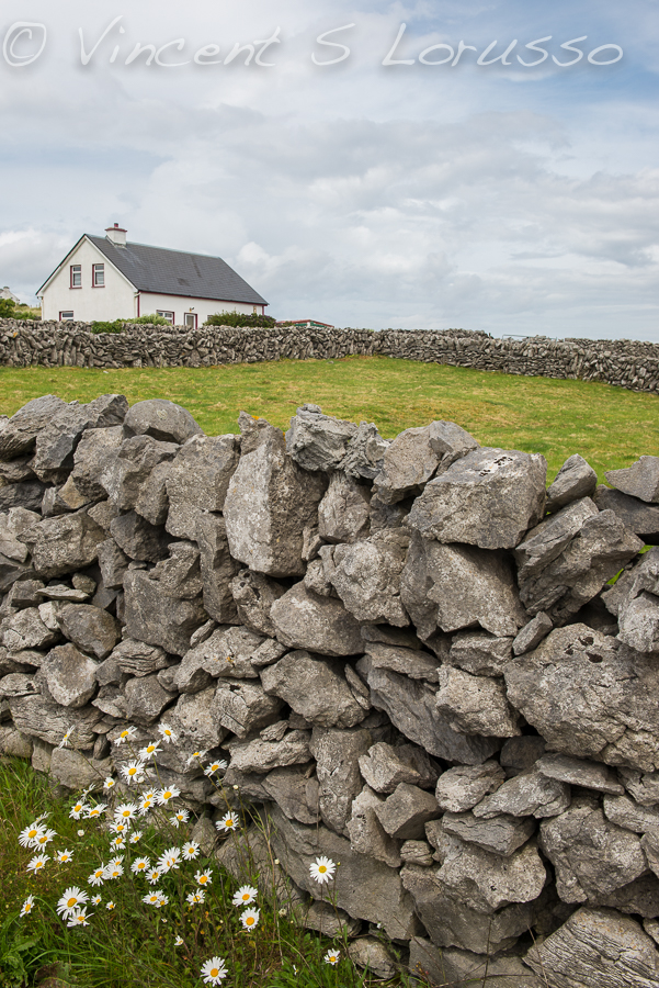 There is so much beauty to be found on Inisheer.